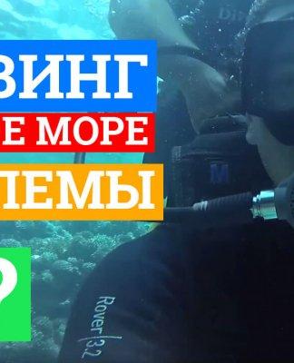 Дайвинг в Египте Шарм-эль-Шейх | Reef Oasis Dive Club